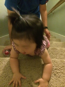 The stairs is the only place in our home that we can get her to crawl. It works! The PT wants her to practice on the stairs every day.